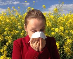 Alergia - jak rozpoznać, jak leczyć?