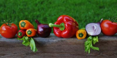 Agriculture – organic is healthier?