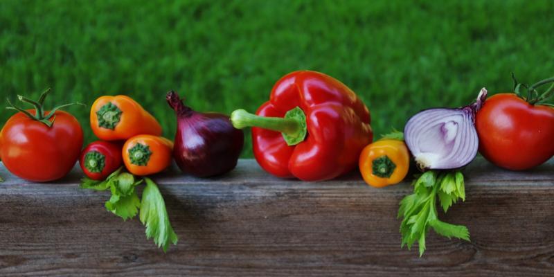 Rolnictwo - ekologiczne znaczy zdrowsze?