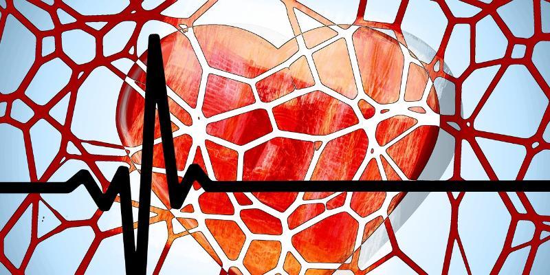 Rozpuszczalne stenty - czwarta rewolucja w kardiologii