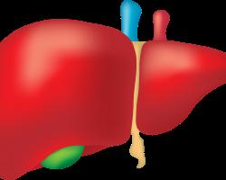 Wirus HCV – mniej zakażeń niż sądzono