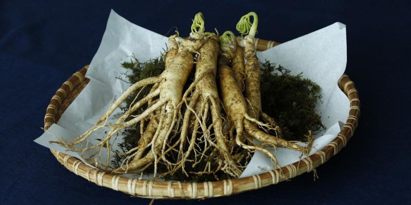 Czy roślinne afrodyzjaki są skuteczne?