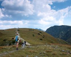 Górskie wycieczki nie są dla wszystkich