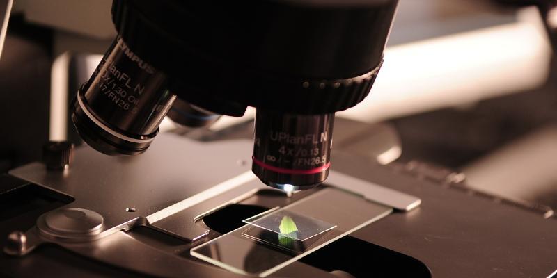 Mikroskop najważniejszy w diagnostyce
