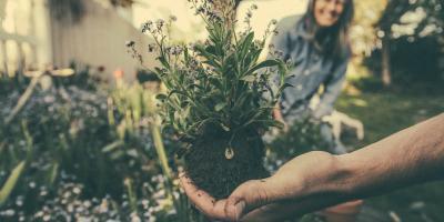 Pielęgnacja ogrodu wycisza i rehabilituje