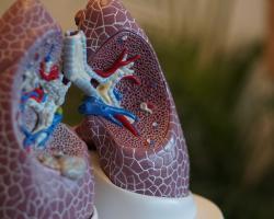 TNP, czyli życie bez tchu