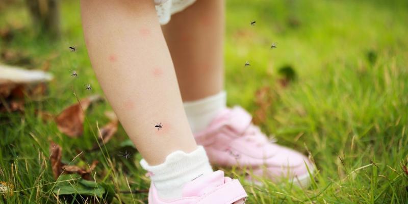Komary a dzieci – co musisz wiedzieć?