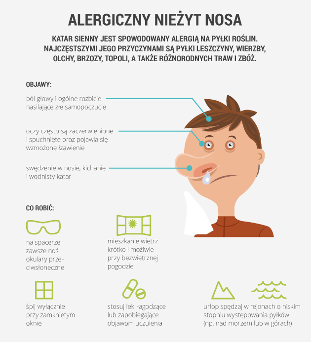 infografika - alergiczny nieżyt nosa