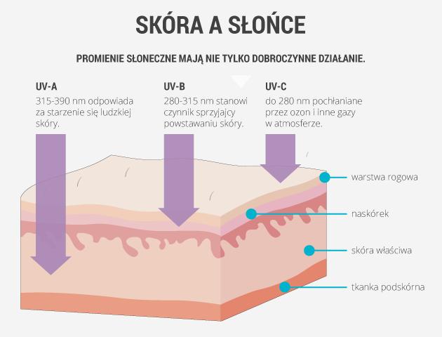infografika - skóra a słońce