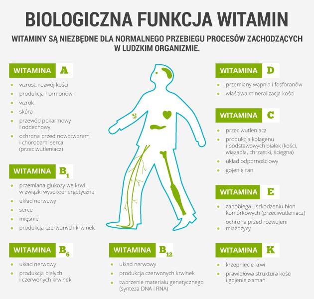 infografika - biologiczna funkcja witamin