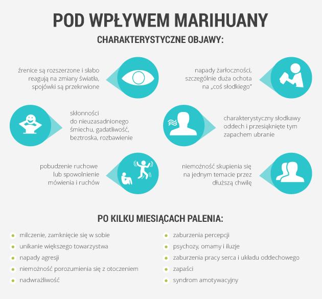 infografika - pod wpływem marihuany