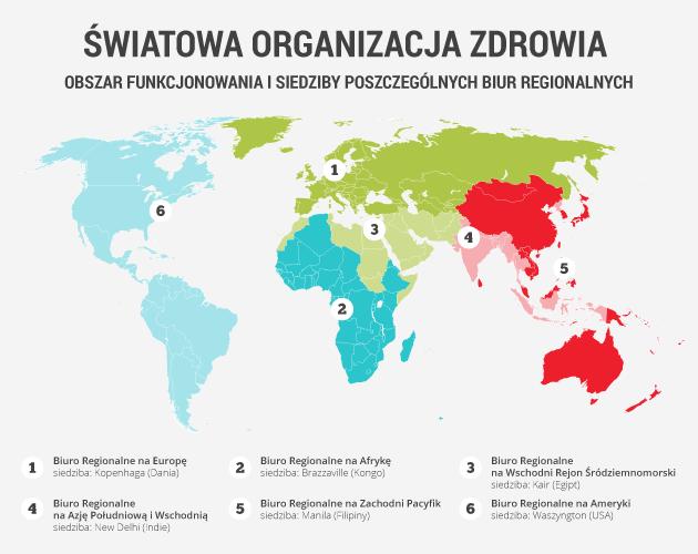 infografika - światowa organizacja zdrowia