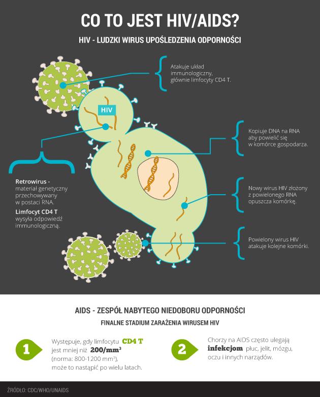 infografika - co to jest HIV/AIDS