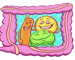 Bakterie jelitowe mogą wpływać na ryzyko otyłości