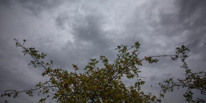 Sezonowa depresja czyli jesień w emocjach