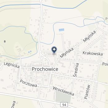 Przychodnia Rejonowa w Prochowicach na mapie
