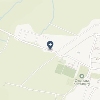 IPS Radziukiewicz-Świerad Aldona na mapie