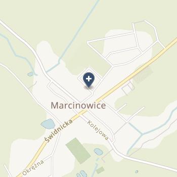 """Przedsiębiorstwo Lecznicze """"Bhmed"""" na mapie"""