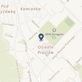 Mariusz Wójcik IPS na mapie