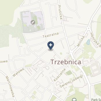 """Trzebnickie Centrum Medyczne """"Zdrój"""" na mapie"""