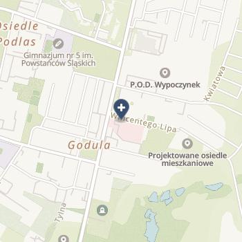 Szpital Miejski w Rudzie Śląskiej na mapie