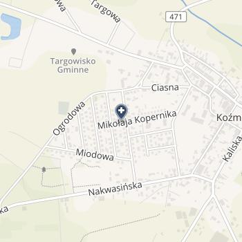 SPZOZ Gminny Ośrodek Zdrowia w Koźminku na mapie