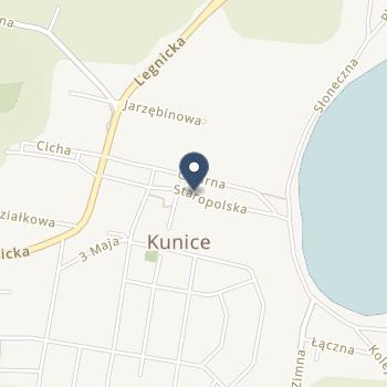SPZOZ - Ośrodek Zdrowia w Kunicach na mapie