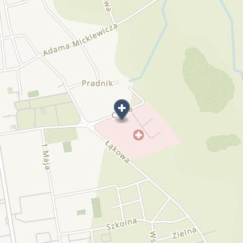 SPZOZ w Lubartowie na mapie