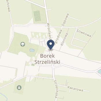 Samodzielny Publiczny Zakład Ambulatoryjnej Opieki Zdrowotnej w Borowie na mapie