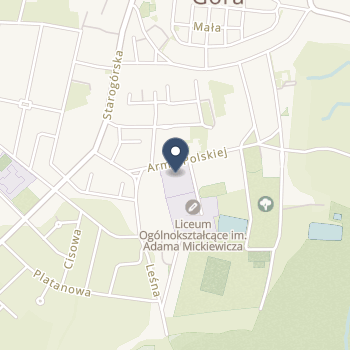IPS Krystyna Ruszczyńska na mapie