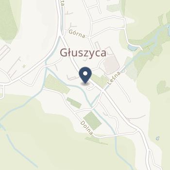 ISPL Kołecka Magdalena Zofia na mapie
