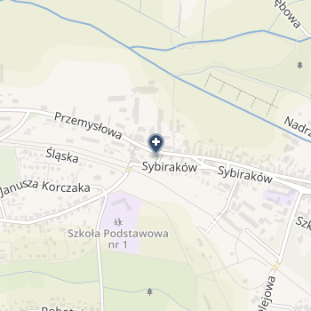 "NZOZ ""Twój Stomatolog"" na mapie"