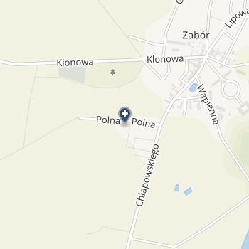 Maciejewska Ilona ISPL na mapie