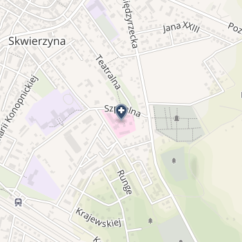 Samodzielny Publiczny Szpital dla Nerwowo i Psychicznie Chorych w Międzyrzeczu na mapie