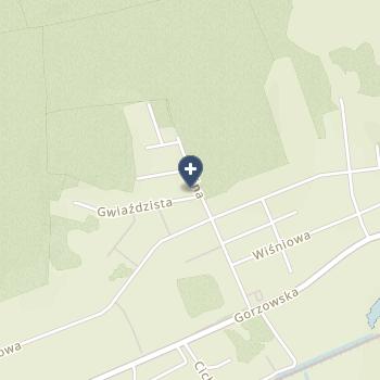 Nowy Szpital w Kostrzynie Nad Odrą na mapie