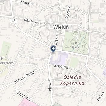 Gabinet Okulistyczny Ewa Burchacińska w Wieluniu na mapie