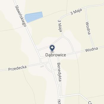 """NZOZ """"Zdrowie"""" w Krośniewicach na mapie"""