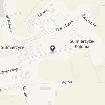 Samodzielny Publiczny Gminny Ośrodek Zdrowia w Sulmierzycach na mapie