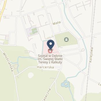 Szpital w Dębnie na mapie