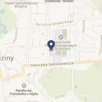 Szpital Powiatowy w Brzezinach na mapie