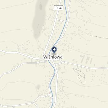 Fizjomed na mapie