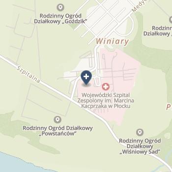 Wojewódzki Szpital Zespolony w Płocku na mapie
