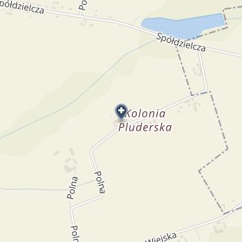 Niepubliczny Gabinet Stomatologiczny Martyn Pielok na mapie