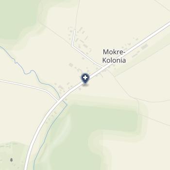 "NZOZ ""Ms-Med"" na mapie"