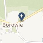 SPZOZ w Borowiu na mapie